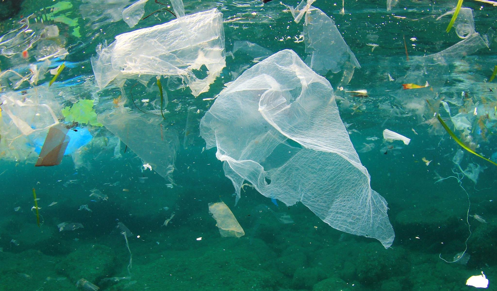 """L'UE e il divieto della plastica monouso: in cosa consiste quello che chiamiamo """"plastica"""""""