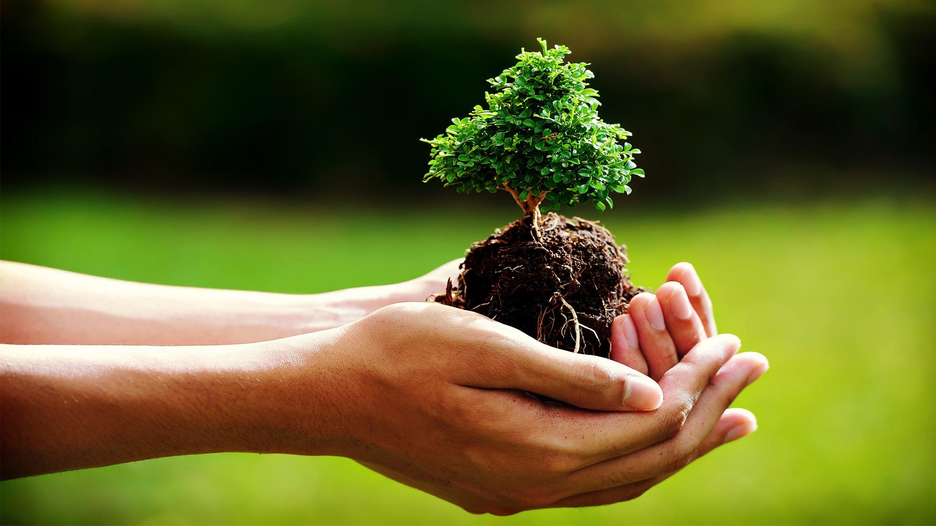 Rispettare la bellezza della natura: D'Annunzio per celebrare il World Environment Day