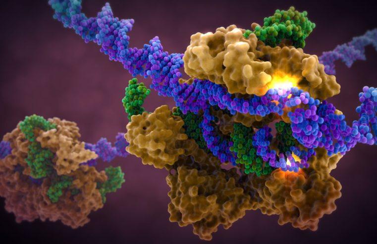 Bambini OGM: genetista russo vuole manipolare il DNA come nell'esperimento cinese sulle gemelle