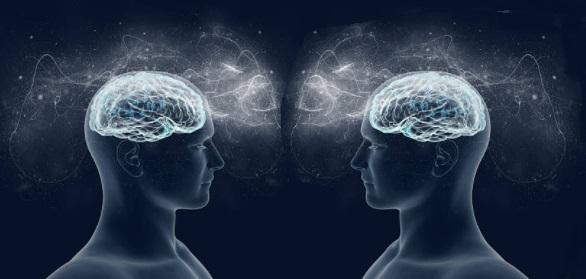 """Empatia ed imitazione: Giacomo Rizzolatti e la scoperta dei """"neuroni specchio"""""""