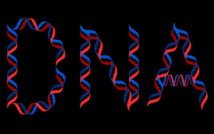 Destra-Sinistra: alla base dell'ideologia cantata da Gaber c'è la genetica?