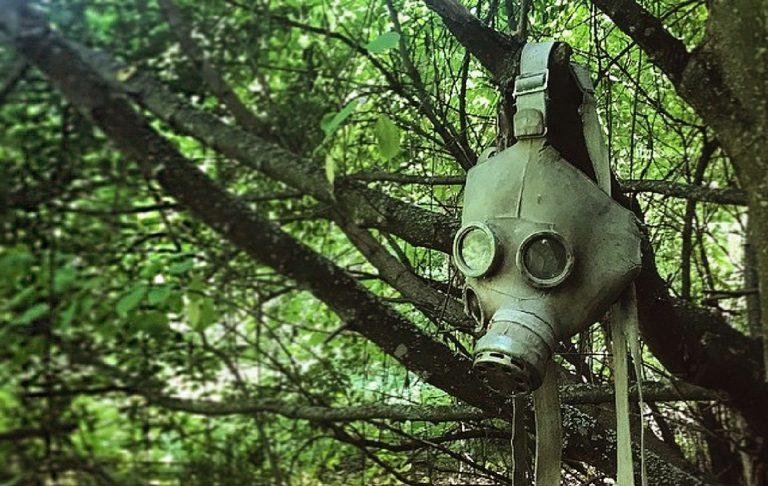 Gli animali di Chernobyl: la condizione dell'uomo moderno tra alienazione e impotenza