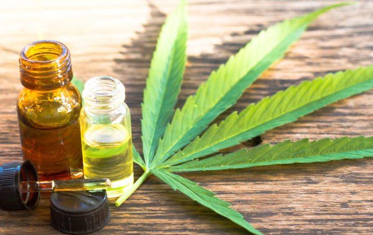 Bob Marley e la cannabis: una pianta dalle mille potenzialitá poco considerate