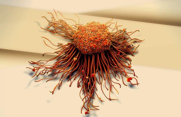Trasformare cellule tumorali in tessuto adiposo: grande risultato di una ricerca svizzera