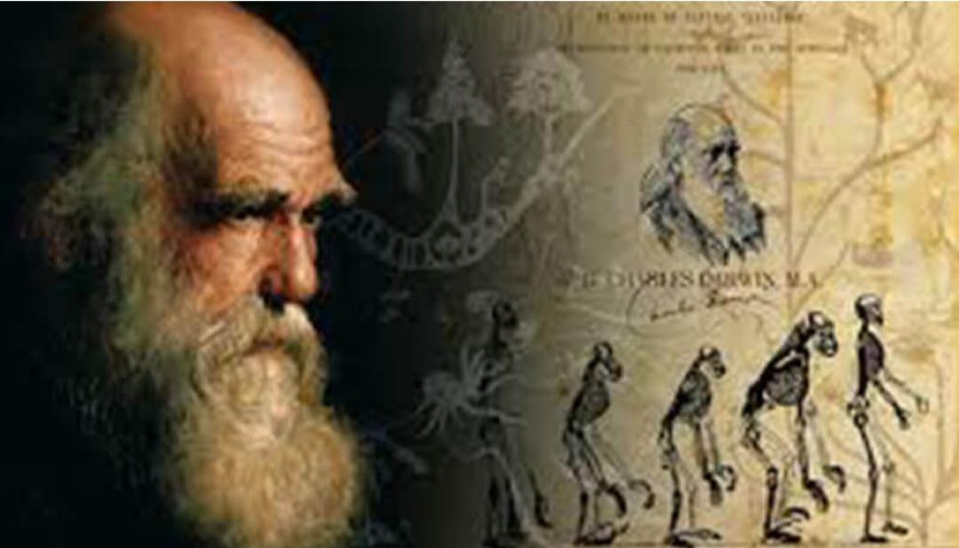 """Dal gigante """"Cambroraster falcatus"""" al piccolo crostaceo: l'evoluzione vista non solo come teoria scientifica"""
