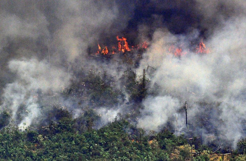 L'Amazzonia brucia: il G7, Fichte e Papa Francesco a tutela dell'ambiente