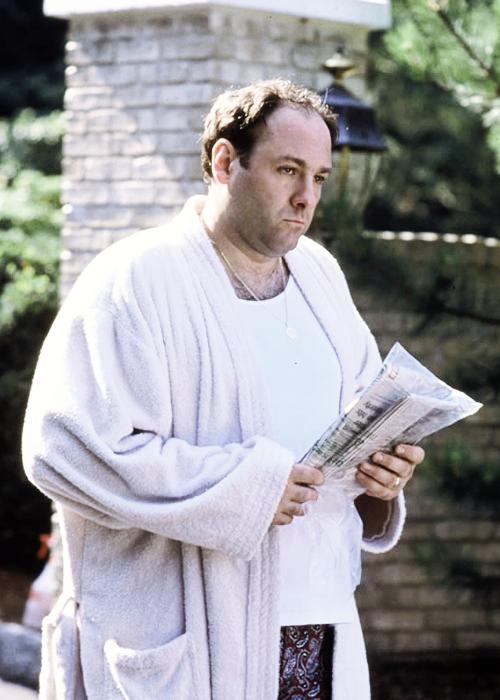 Tony Soprano: l'uomo, il potere e la solitudine analizzati tramite il paragone con Madame Bovary