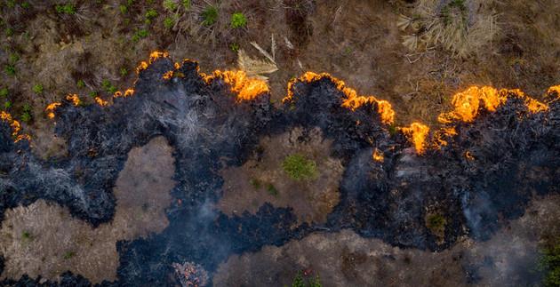 Le ceneri dell'Amazzonia arricchiscono il Brasile: Il piano di Bolsonaro per sfruttare la catastrofe