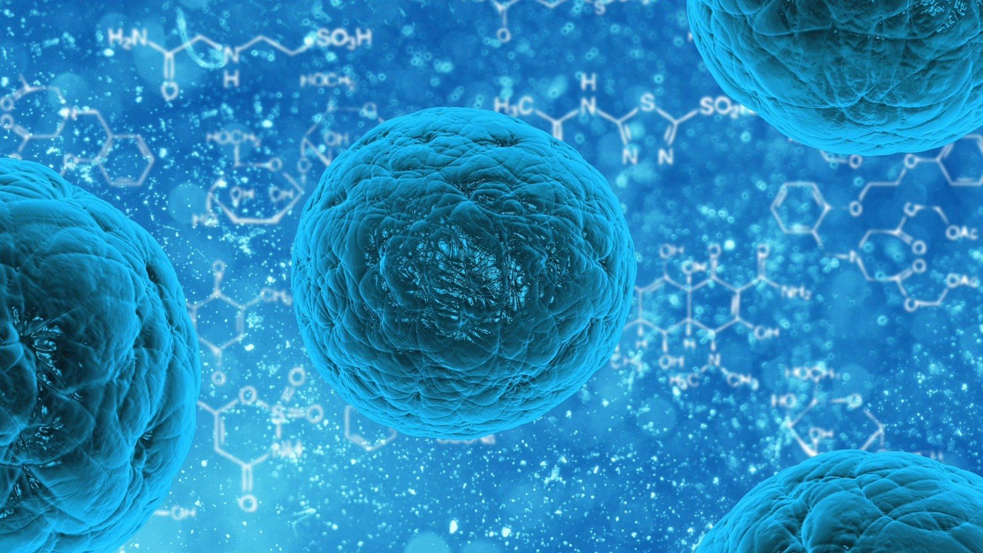 Virus contro batteri, alcuni cibi possono far iniziare la guerra nel nostro intestino