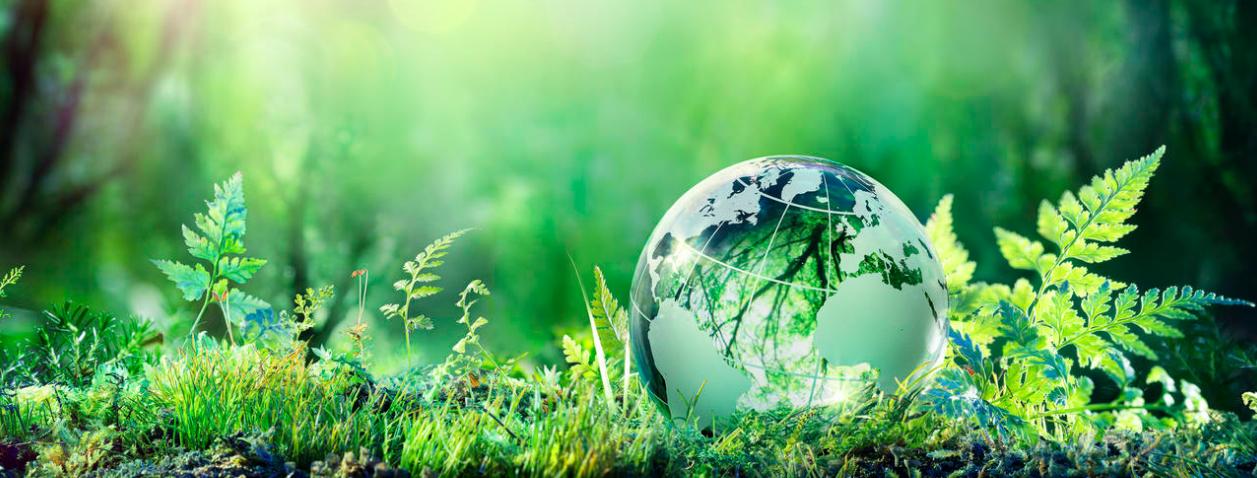 Non c'è prova del riscaldamento globale: la scienza dietro al Green New Deal